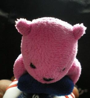 キャロ熊2.jpg